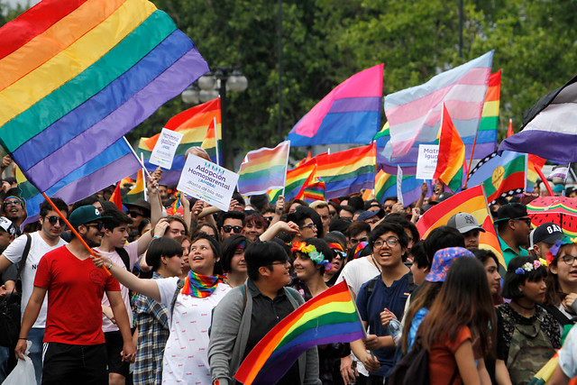 Movilh anuncia marchas por matrimonio igualitario para este 14 de febrero -  Mi Valdivia